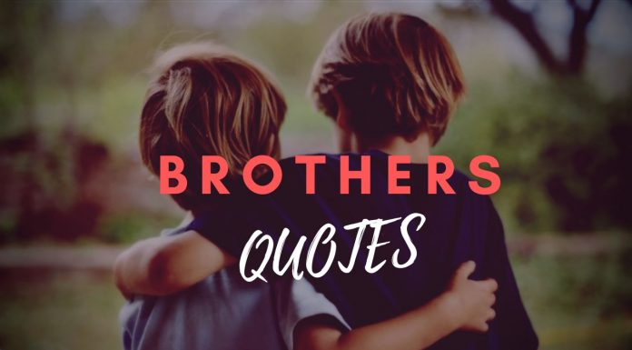 We Share Best Collection of Best Brother Quotes, Big Brother Quotes, Cousin Brother Quotes, I Love My Brother Quotes, Younger Brother Quotes in Hindi & English