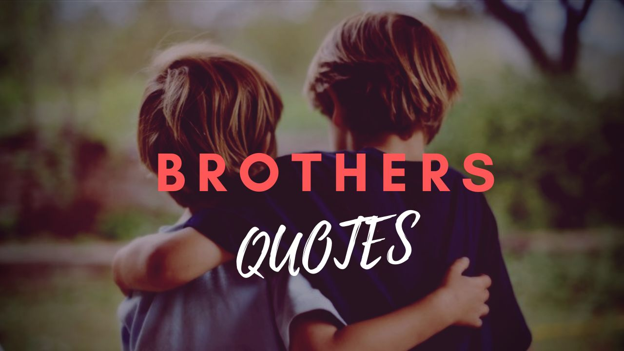 Best Brother Quotes Shayari Sibling To Say I Love My Brother