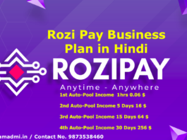 What is Rozi Pay Plan in Hindi, Rozi Pay Plan Kya Hain? How to Earning With Rozi Pay Vs Razoo Auto-Pool & Club Income & Different 8 Types of Income Plans PDF Registration Process