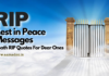 Rest in Peace (Condolence) Messages 2021: Death RIP Quotes For in Brother, Sister, Father (Dad), Mother (Mom), Grandmother, Grandpa, Grandma, Best Friend Daughter, Pets in English, Hindi, Telugu